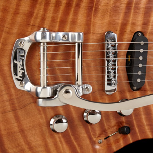 https://bornguitars.com/wp-content/uploads/2014/11/body-pickguard-no-pickguard1-600x600.jpg